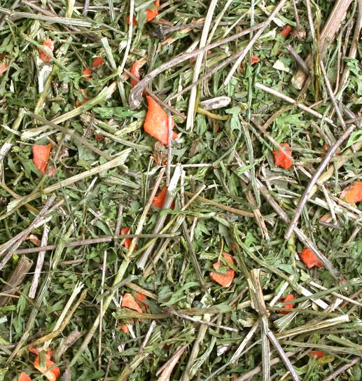 Porkkana Ryhmä